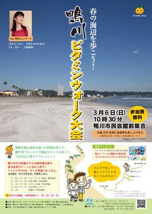 春の海辺を歩こう!鴨川ビタミンウォーク大会